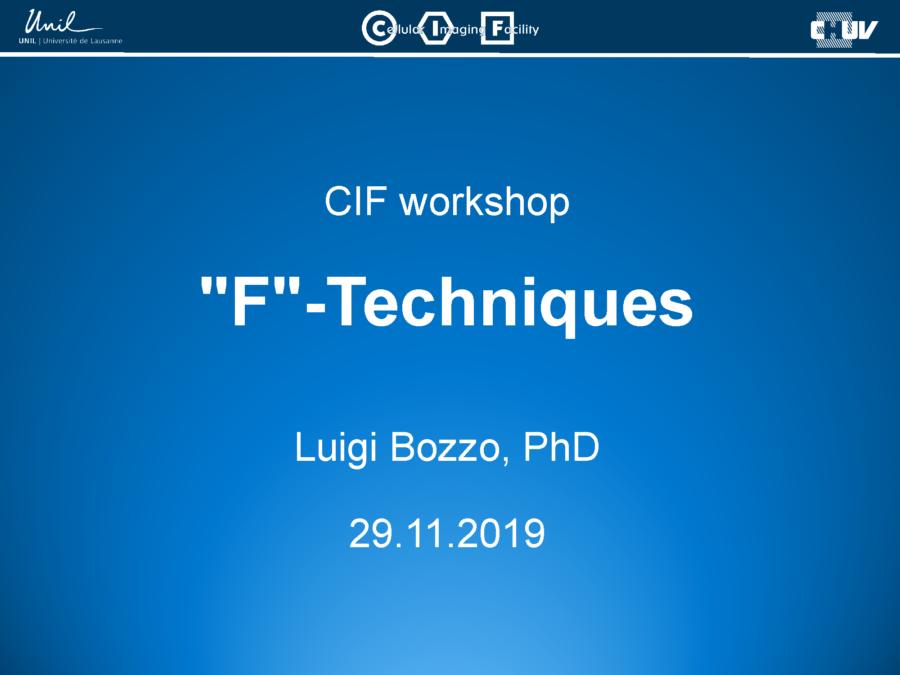 F-Techniques [Luigi Bozzo, 2019]